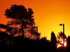 nace un nuevo día de julio Celestial, Explore, Sunset, Outdoor, New Day, One Day, Sunsets, Outdoors, Exploring
