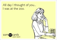 All day I thought of you... I was at the zoo.