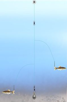Fishing Tandem Kentucky Rig