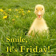 Happy Friday #TGIF
