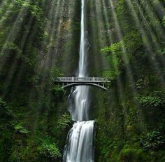 Multnomah Falls - a Double Natural Wonder in Oregon, USA World Most Beautiful Place, World's Most Beautiful, Beautiful Places, Amazing Places, Beautiful Scenery, Amazing Things, Beautiful Landscapes, Multnomah Falls Oregon, Horsetail Falls