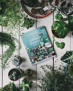 Living and styling with plants. The Urban Jungle bloggers have created a book packed with green inspiration plant styling ideas and handy plant information for all of you who want to bring more green into your homes and daily lives. Showcasing how beautiful individual and creative green living can be this book will take you on an inspirational voyage through five green homes across Europe (including our own!) We are so excited to have been chosen and featured alongside the other beautiful…