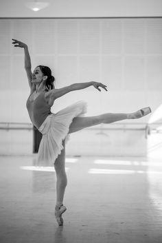 Marianela Nuñez and Stéphane Bullion in Swan Lake rehearsal at Vienna State Ballet Photo © Ashley Taylor Ashley Taylor, Ballet Poses, Ballet Dancers, Ballerina Dancing, Bolshoi Ballet, Royal Ballet, Dance It Out, Just Dance, Dance Photos
