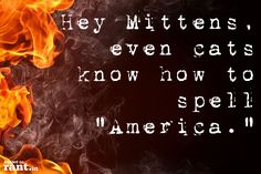 """Hey Mittens, even cats know how to spell """"America."""" 