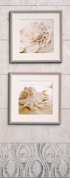 Морские раковины цвета бежhttp://www.roommy.ru/catalog/photos/cockleshell1/