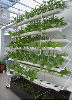 space efficient aquaponics - Recherche Google
