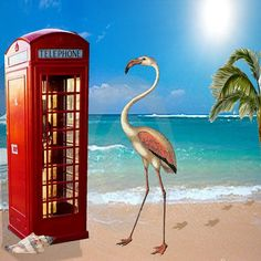 https://flic.kr/p/D9wE6M | Call Home | This week's artist of inspiration shows us wonderful tongue-in-cheek art.  This is my stab at it!  Background and phone booth cybersurfed, flamingo was a Pinterest freebie, and the palm tree is in my stash for years.
