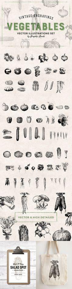 The Complete Vector Design Toolkit #vector #foodart