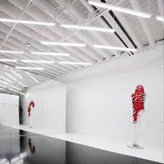 thin exposed fluorescent lights in open studio