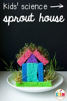 "Spring is just around the corner and my kiddos are itching to start planting seeds.  Our  little DIY sprout house made from sponges had my kids giddy with excitement.  Combining engineering and science into one awesome project was a motivating way to learn about germination. It definitely brought a whole new meaning to the word ""greenhouse""! (Get it?!) These awesome sprout houses are the perfect addition"