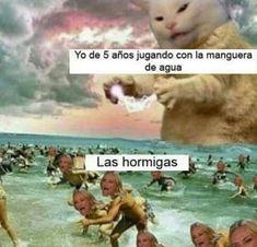 Best Memes, Dankest Memes, Funny Memes, Jokes, Funny Spanish Memes, Spanish Humor, Bff Images, Wallpaper Animes, Funny V