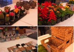 DIY planter workshop at brit + co