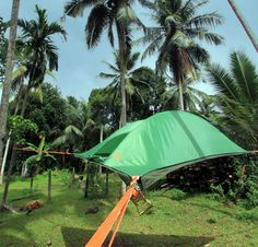Tree Tent #camping #outdoors // Tentsile