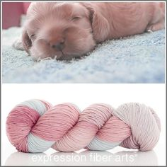 Expression Fiber Arts Yarn - PUPPY 'RESILIENT' SUPERWASH MERINO SOCK, $24.00 (http://www.expressionfiberarts.com/products/puppy-resilient-superwash-merino-sock.html)