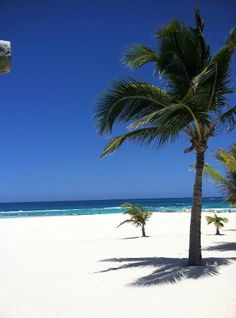 Hard Rock Hotel & Casino Punta Cana: beach