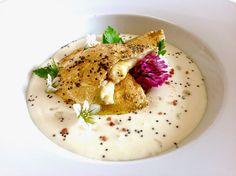 Hummus, Panna Cotta, Aglio, Champagne, Hawaii, Ethnic Recipes, Menu, Food, Chef