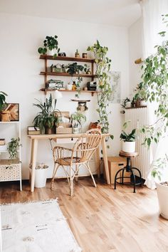 Indoor Plants Ideas To Make More Home Fresh Indoor plants can be used as home decoration is not new. However, the trend of home decoration using plants is growing. Besides being able to add a be. Home Office Decor, Diy Home Decor, Masculine Office Decor, Masculine Interior, Decoration Crafts, Cool Office Space, Room Ideas Bedroom, Bedroom Ideas For Small Rooms Women, Beds For Small Rooms