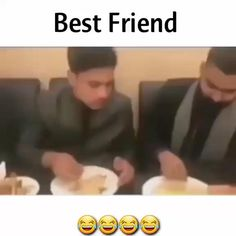 Exam Quotes Funny, Best Friend Quotes Funny, Funny True Quotes, Jokes Quotes, Funny Fun Facts, Latest Funny Jokes, Some Funny Jokes, Crazy Funny Videos, Funny Videos For Kids