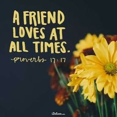 "A Prayer to Value Friendship over Disagreements By Janet Thompson ""A friend loves at all times."" (Proverbs Sadly, during this presidential election, we've witnessed adult meltdowns among friends and relatives who found it . Bible Verses About Friendship, Bible Verses About Love, Favorite Bible Verses, Friendship Poems, Christian Friendship Quotes, Christian Quotes, Proverbs Verses, Proverbs 17 17, Tatoo"