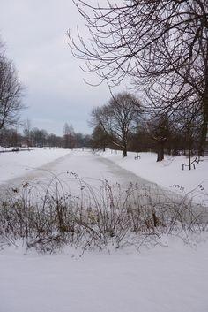 Sneeuw, Groningen.