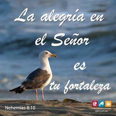 Hoy es un día dedicado a nuestro Dios, así que no se pongan tristes. ¡Alégrense, que Dios les dará fuerzas!» (Neh.8:10) http://hopemedia.es
