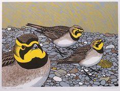 Shorelarks by Robert Gillmor Etching Prints, Bird Artwork, Wood Engraving, Wildlife Art, Linocut Prints, Bird Prints, Printmaking, Illustration Art, Illustrations