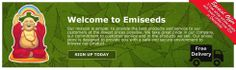 EMI Seeds offer you no frills money saving cannabis seeds from all the top cannabis and marijuana seed banks in the world. How do we keep our prices low  We are the no 1 bulk buyer for cannabis seeds we buy direct in massive quantities supplying trade at wholesale and now direct to you So you not only save money but get the best seeds for less. We also provide free delivery across the U.K