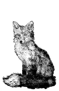 Great range of wall art for sale. Featuring many art prints by top NZ artists, including Rita Angus and more. Wall Art For Sale, New Zealand, Fox, Batman, Autumn, Art Prints, Artist, Animals, Fictional Characters