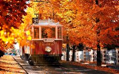 Top 20 Places Where Autumn Is Incredibly Beautiful - Tram on the Prague street, Czech Republic Autumn Tumblr, Autumn Scenes, Free Hd Wallpapers, Tumblr Wallpaper, Autumn Inspiration, Czech Republic, Scenery, Around The Worlds, In This Moment