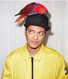 Appearing in a photo shoot for WSJ. magazine, Bruno Mars wears a Tommy Jeans jacket with an Allante Lux cap. Bruno Mars Concert, New Jack Swing, Magazine Man, Pop Rock, Look At The Stars, My Favorite Music, Celebrity News, Fangirl, Celebs