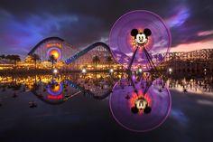 Retiring Disneyland photographer shares some of his favorite images - The Orange County Register
