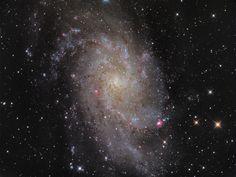 M33: Triangulum Galaxy  (Credit/Copyright: Manfred Konrad)