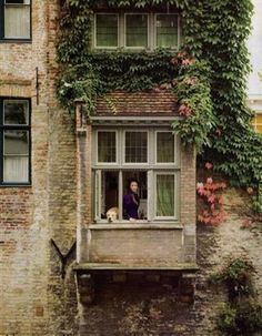 the dog's Fidel and the house is the Huyze Hertsberge B in Bruges Beautiful Buildings, Beautiful Homes, Beautiful Places, Window View, Bay Window, Bruges, Through The Window, Windows And Doors, Architecture Details