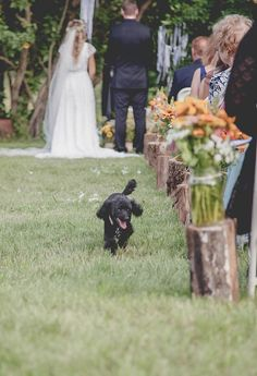 #ringsontheizings Run Away Poodle Bride: woodland, whimsical, fairy tale, summer, outdoors, happily ever after, wedding aisle, tree trunk, rustic, ranch decor, DIY Floral: Margareta Warlick Photographer: Taja Sparks Ar-Drive