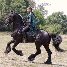 This is the Fresian body type (Baroke) that I like. I like heavy horses.
