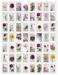 FREE printable flower stamps - just adorable!! @ Georgianna Lane