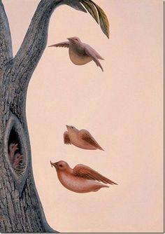 Оптические илюзии от Octavio Ocampo