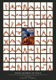 Mudras are often used along with pranayama breathing exercises to stimulate different parts of the body that are involved with breathing and to affect the flow of prana. Qigong, Yoga Fitness, Yoga Bewegungen, Yoga Meditation, Meditation Practices, Pranayama, Kundalini Yoga, Chakras, Reiki