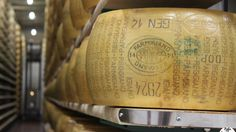 """""""Conhecendo a produção do Parmigiano Reggiano"""" by @italiapbrasil"""