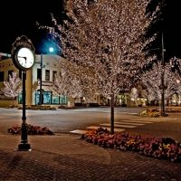Fairhope, AL.  I've spent LOTS of money, right behind that tree... at Fairhope Pharmacy's Christmas Around the Corner :)