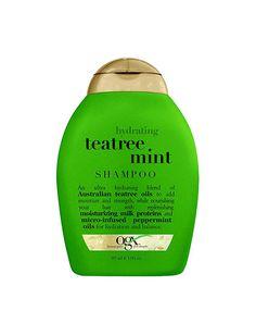 Best Mint Shampoos For Your Hair And Scalp - Mane Addicts Mint Shampoo, Mane Addicts, Beauty Express, Peppermint Oil, Milk Protein, Shampoos, Hair Health, Summer Hairstyles, New Hair