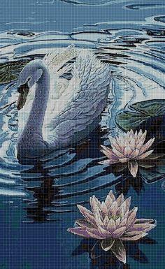 Swan+in+the+water+cross+stitch+pattern+in+pdf+DMC