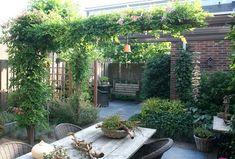 Pergola With Glass Roof Referral: 2065714914 Garden Gazebo, Pergola Patio, Balcony Garden, Backyard Landscaping, Back Gardens, Small Gardens, Outdoor Gardens, Porche, Small Garden Design