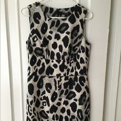 Ann Taylor Animal Print Sheath Dress Stand out at work in this beautiful Ann Taylor sheath dress, featuring a black and grey animal print. You can go from the office to happy hour in this lovely piece. Ann Taylor Dresses Midi