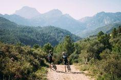 Cycling Workout: Descending Intervals | Strava