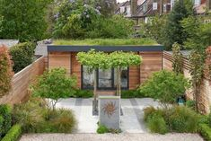 Stunning, Contemporary Garden Room in Wandsworth, London Garden Of Eden, Home And Garden, Small Garden Office, Contemporary Garden Rooms, Cedar Cladding, Wild Flower Meadow, Living Roofs, Studio Green, She Sheds