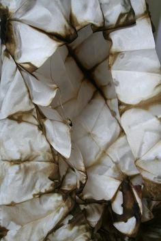 alice fox | silk | dyed with onion skins and iron | 2011