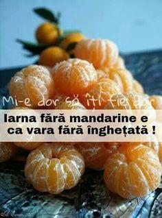 Iarna fara mandarine e ca vara fara inghetata