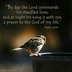 Ps. 42:8