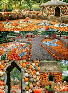 This pumpkin village in the Dallas Arboretum is like something out of a dream!